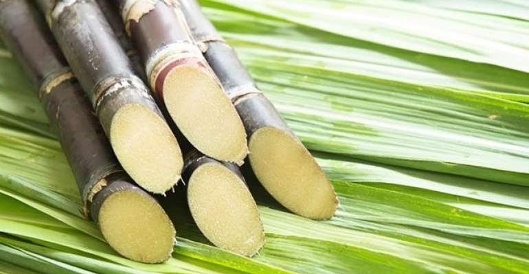 Maior precatório do país - Cana-de-açúcar